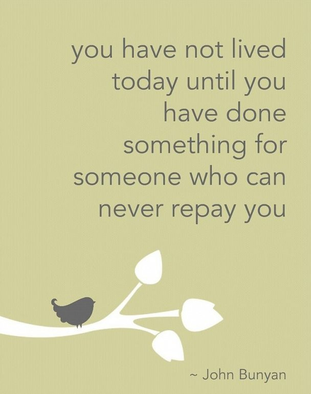 You Have Not Lived quote