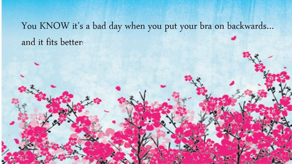 Bra quote