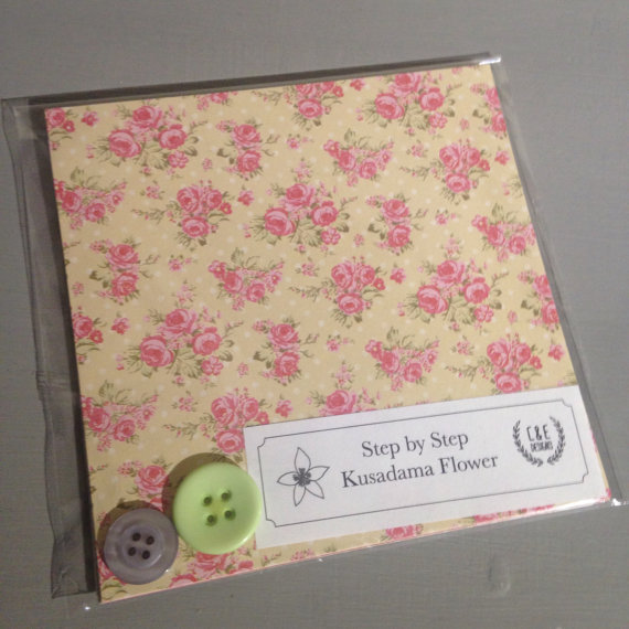 C and E Designs Papercraft Kits