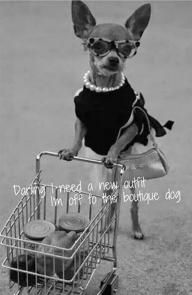The Boutique Dog Lytham