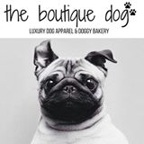 Boutique Dog